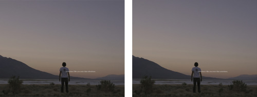 Richard T. Walker, like you, Diptych, 2008