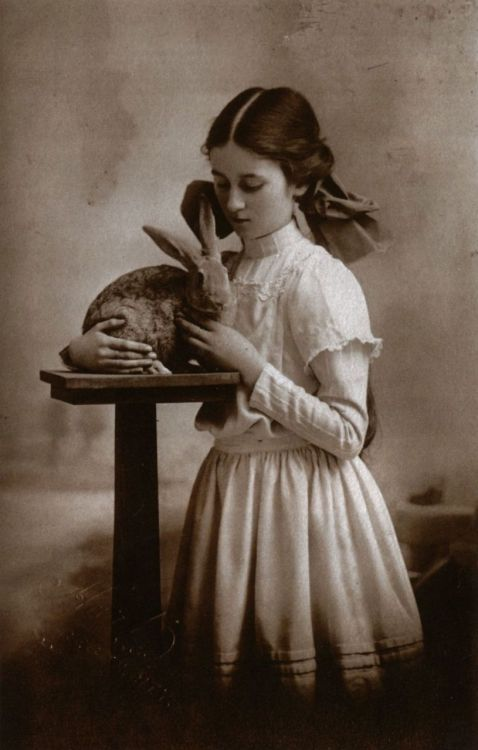 Girl cuddling rabbit, circa 1909  From Beauty and the Beast: Human-Animal Relations as Revealed in Real Photo Postcards, 1905-1935 with thanks to liquidnight for her extraordinary collection