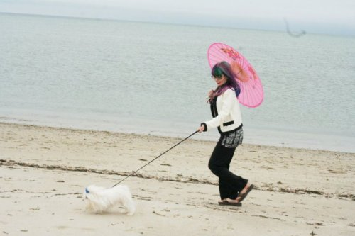 with my Dog Mitzi on the beach in the rain