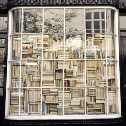 Presented without comment, here is a window filled with books.