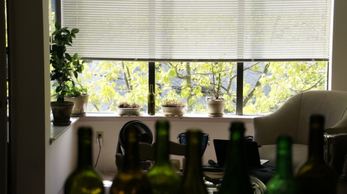 this is a still photo taken with my new sony nex vg10.  great camera.