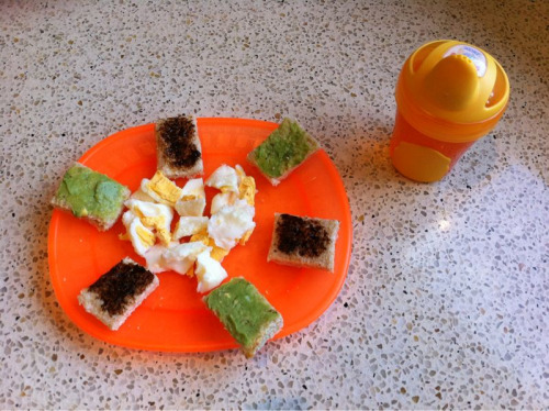 Yummy eggs with avocado & vegemite toast and a sippy of water.