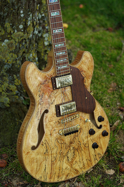 math-metal-is-delicious:  spigool:  Ibanez Artcore AS103 Série Custom SMNT  My guitar Except….weeeeiiiird. I miss it, I shouldn't leave it at my friends houses that often