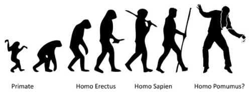 Homo Pomus - of Apple