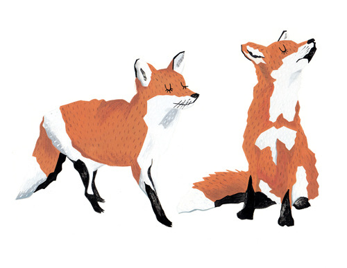 Cute Little Foxes | illustrations by josieportillo, using gouache from online fox reference.