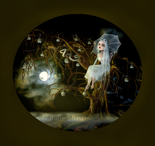 Moonlight by Natalie Shau