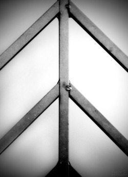 30-Days Photo-A-Day Challenge.Day 22: Symmetry.