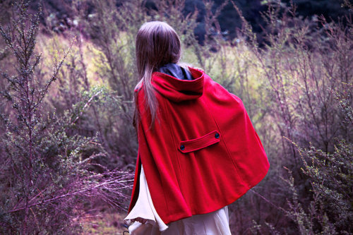 (via Riding Hood by *Sky-flame on deviantART)