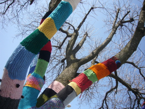 starsandkeys:  Yarn bombing, yarnbombing, yarnstorming, guerrilla knitting, or  graffiti knitting is a type of Graffiti or street art that employs  colorful displays of knitted or crocheted cloth rather than paint or chalk. While yarn installations – called yarn bombs or yarnstorms  – may last for years, they are considered non-permanent, and, unlike  graffiti, can be easily removed if necessary. The practice is believed  to have originated in the U.S. with Texas knitters trying to find a  creative way to use their leftover and unfinished knitting projects, but  it has since spread worldwide. from Wikipedia—->