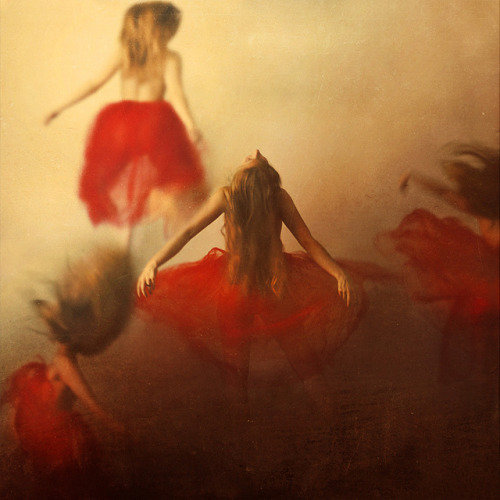 a territorial marking by brookeshaden on Flickr.