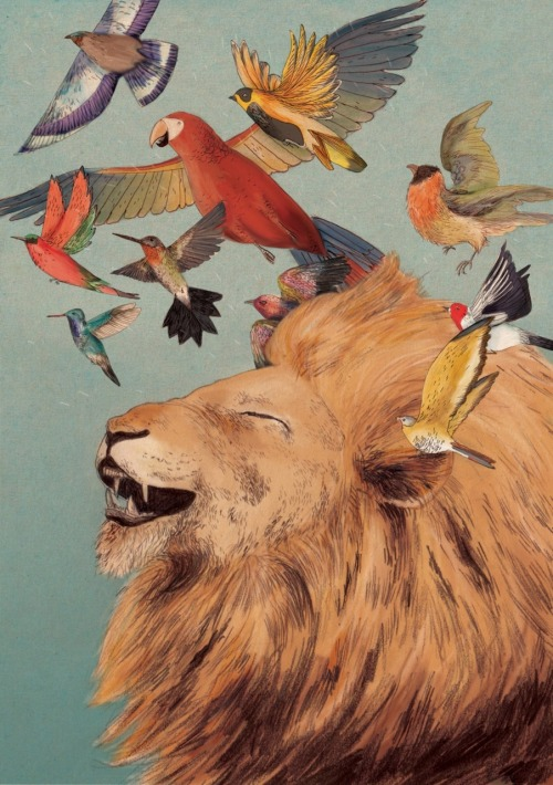 lion with exotic birds