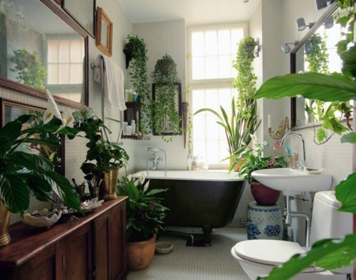 wild-o-a-s-i-s:  awklicious:  wow can this be my bathroom?  q'd school :(