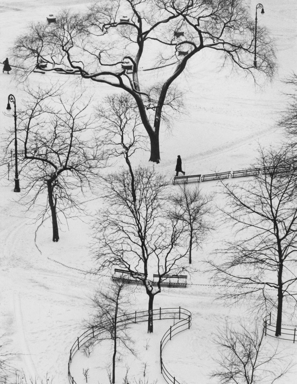 "André Kertész ""Washington Square"" (New York, January 9, 1954)"