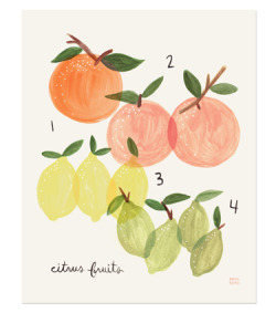 I think this Citrus Print from the Rifle Paper Co. is absolutely charming.  [Also, their new Floral Monogram Cards are similarly delightful.]