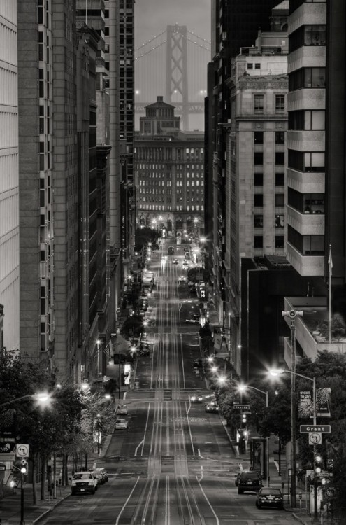 bella102:  darkerangels: Gnite Tumblrites  San Francisco is such a beautiful city.