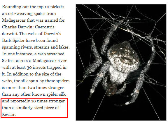 "Madagascar is amazing. ""The webs of Darwin's Bark Spider have been found spanning rivers, streams and lakes. In one instance, a web stretched 82 feet across a Madagascar river with at least 30 insects trapped in it. In addition to the size of the webs, the silk spun by these spiders is more than two times stronger than any other known spider silk and reportedly 10 times stronger than a similarly sized piece of Kevlar."""