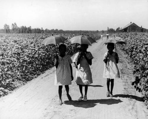 alfred eisenstaedt - 3 sharecroppers' daughters on their way to sunday school, greenville, ms, 1937