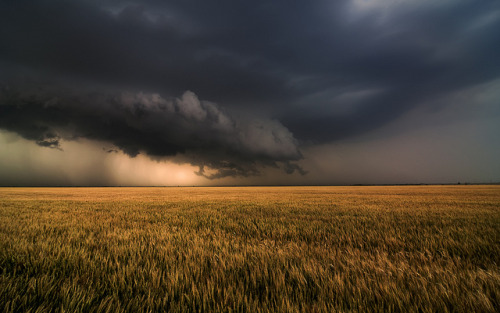 Shelf Cloud Near Nash, OK by Matt Granz Photography on Flickr.
