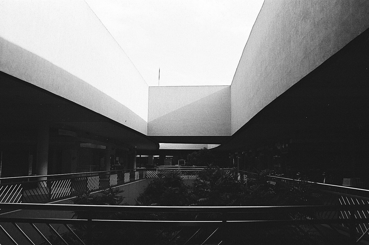 No Caption Film: Fujifilm Neopan 400 Camera: Canon EOS 300 -bramasuncion