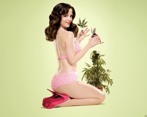 two favorite things weed and pin up girls