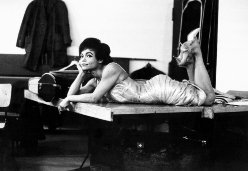 beaucoupshade:  Eartha Kitt, 1960