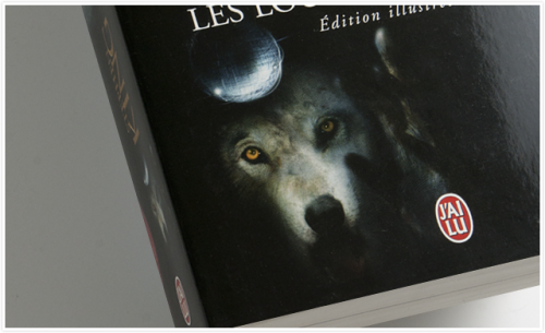 French latest edition of The Dark Tower V: Wolves of the Calla by Stephen King.