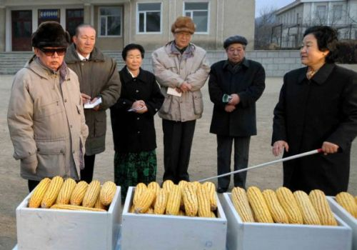kimjongillookingatthings:  looking at corn  Looking at Kim Jong Il looking at corn.