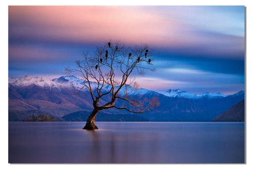 landscapelifescape:  Lake Wanaka, Otago, New Zealand (by kelpie1)