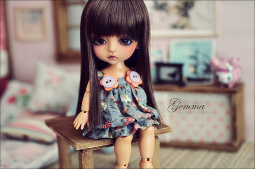 Gemma thinking by ***Andreja*** on Flickr.