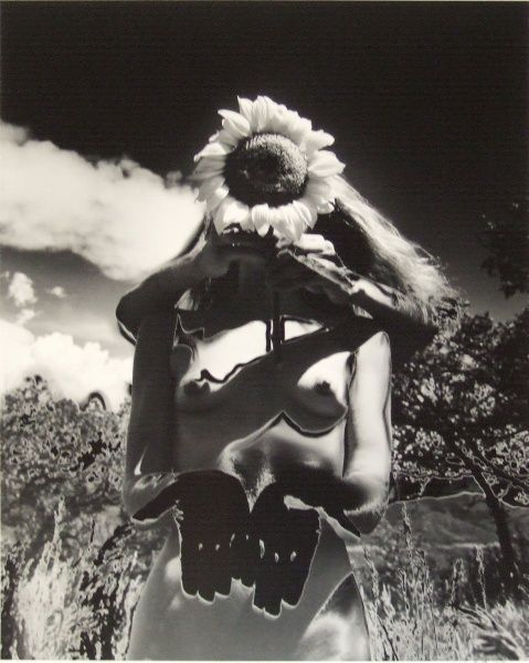 "Eikoh Hosoe ""Sunflower Song"" 1992"