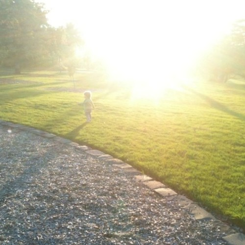 Son in Sun (Taken with Instagram at Footscray Park)