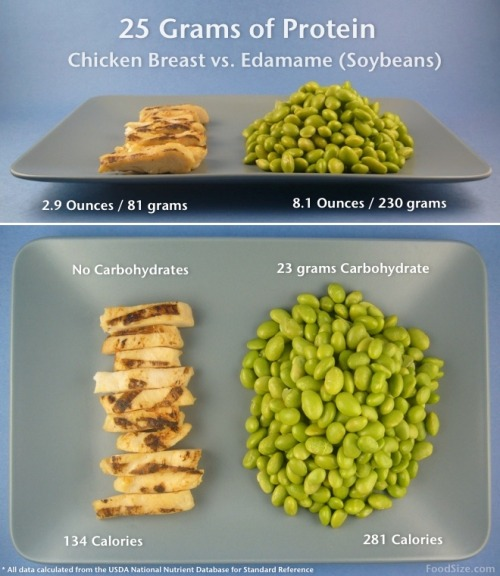 25g of protein grilled chicken breast and edamame (whole soy)