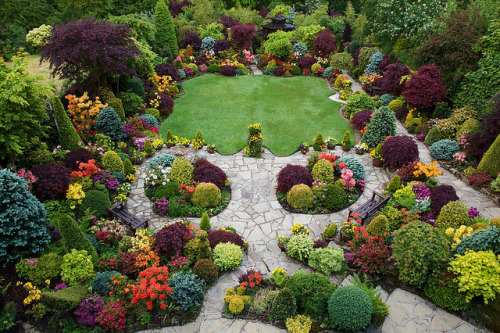 zoombieland:  Colours in the upper garden  (May 28) by Four Seasons Garden on Flickr.