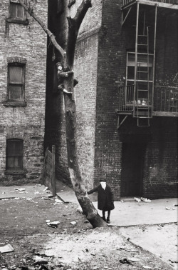 melisaki:  untitled, NY photo by Helen Levitt, 1940