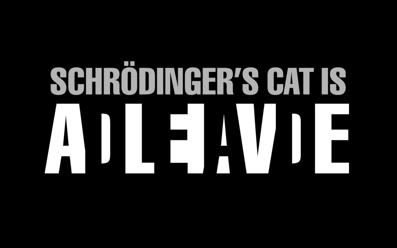 scienceisbeauty:  The Schrödinger's Cat paradox. A complement of the previous post.  Love this!