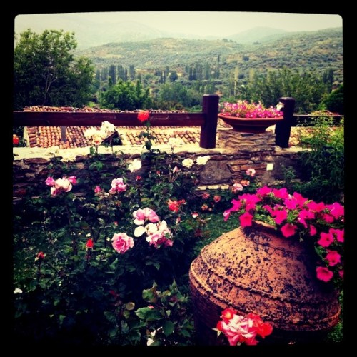 travelbuff:  View from my boutique hotel (Taken with Instagram at Şirince)  şirince yabancılar geldiler çektiler gittiler.