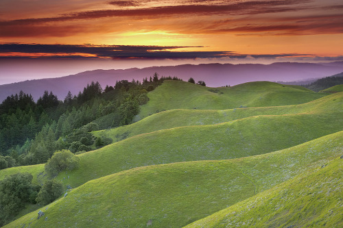 San Andreas Fault Lines, Stinson Beach, California  photo by patricksmith