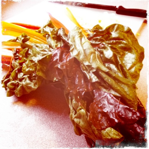 Swiss chard is the most beautiful veggie. I am ashamed to say I didnt know it came with rainbow stems up until recently. I am making a leek and swiss chard tart. I  Kaimal Mark II Lens, Kodot XGrizzled Film, No Flash, Taken with Hipstamatic
