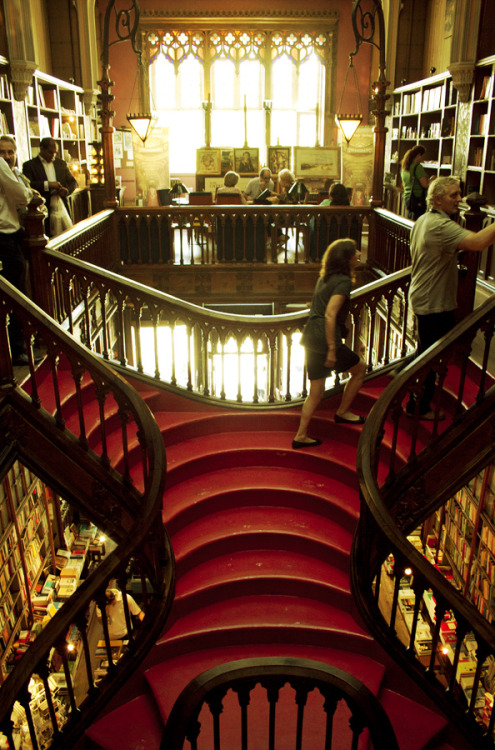 livraria lello, which inspired the harry potter's library in hogwarts. if you happen to visit the city of porto, you should not miss the chance to stop by. ps: be careful if you want to take pictures, the staff can get a little angry if they catch you doing it.
