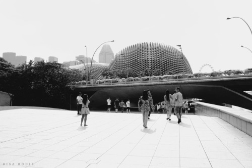 Esplanade in Black and white