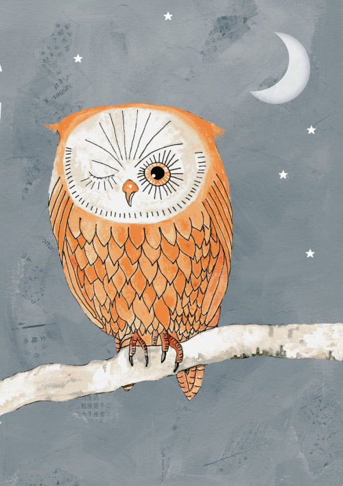 etsyfresh:  Owl illustration from bellablackbird.