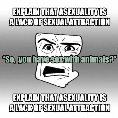 I've often wondered what sexual attraction is. Apparently it is all that keeps you from wanting/having sex with animals! This meme is brought to you by this post which reminded me of some interesting messages a few members of the Hot Pieces of Ace team (myself included) got regarding zoosexuality. We don't experience sexual attraction so clearly we understand what it means to desire a sexual relationship with an animal.  This sort of follow up is not as uncommon as one might think and I just don't get it!