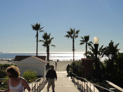 View from Hotel del Coronado // Jan '11