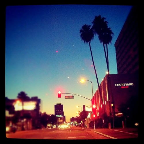 Cruisin' down #VenturaBlvd. #LosAngeles #LA #ca #PalmTrees (Taken with instagram)