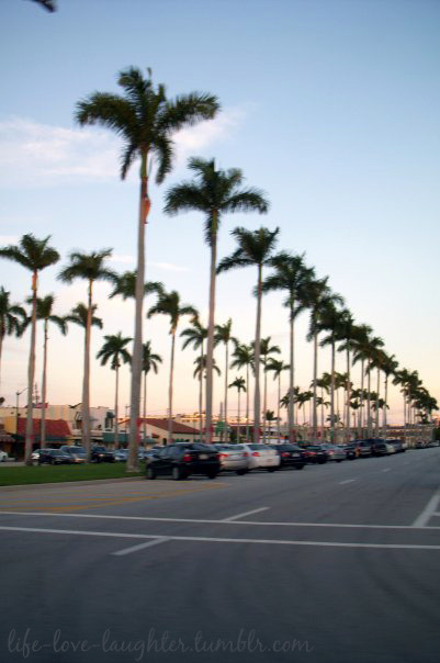 Royal Poinciana Way: Palm Beach, Florida