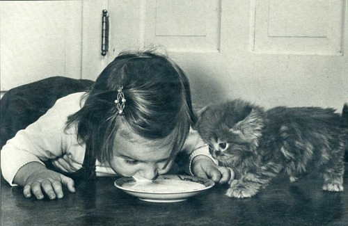 little girl and kitty, LIFE Magazine