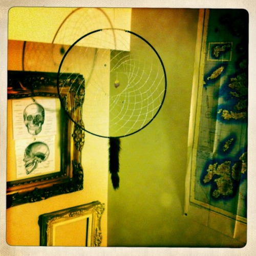 Dreamcatcher made by me. My number one girl taught me how to do this.
