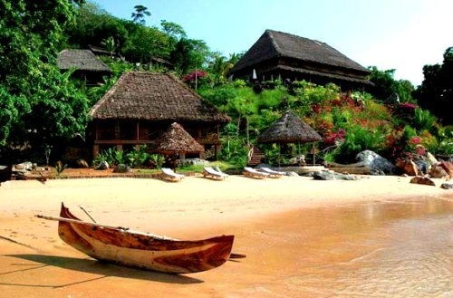 530. Go visit the Island of Madagascar