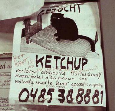 You've got Ketchup?!