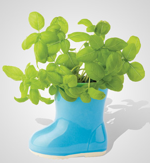 DIY: Rainboot Garden!  Happy summer! Why not start out your summer garden with this adorable planting idea? It is also a great addition to any room in your house. You can get this mini rainboot garden from fredflare.com OR you can do it yourself!